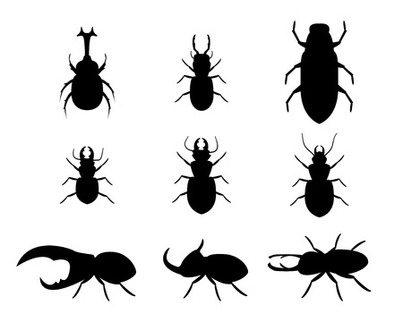 stag beetle: Set of stag beetle in silhouette style, vector icons