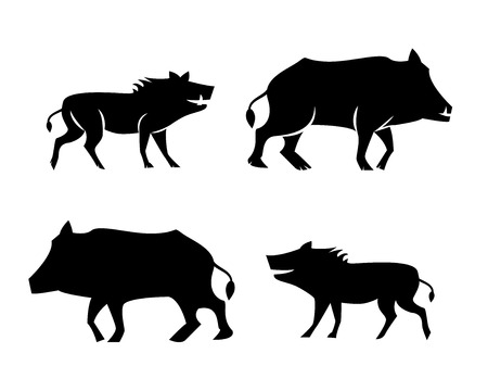 Boar icons and symbol in silhouette style, vector