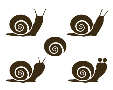 Set of Snail icon and signs, vector