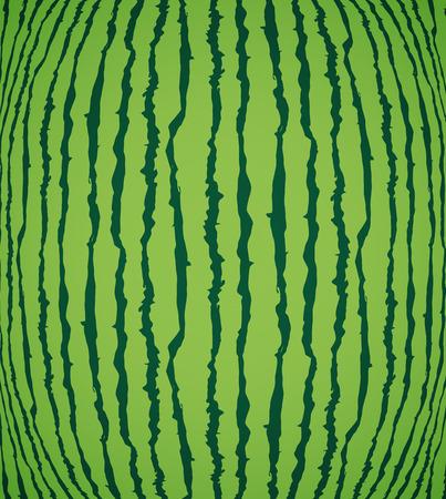 Watermelon texture background, vector art