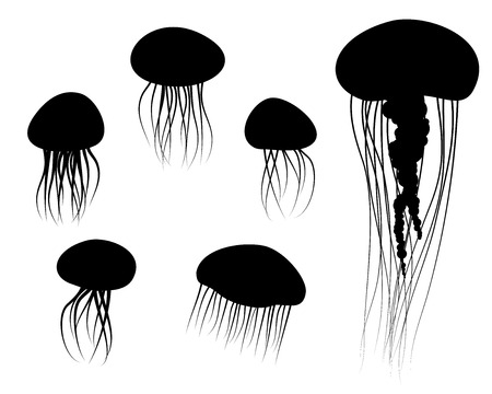 Set of Jellyfish Icons in silhouette style, vector animal Ilustração