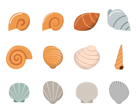 cartoon snail: Set of shell in flat style, top view, vector