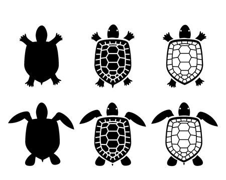 tortuga: Conjunto de tortuga y la tortuga iconos, vista desde arriba, vector