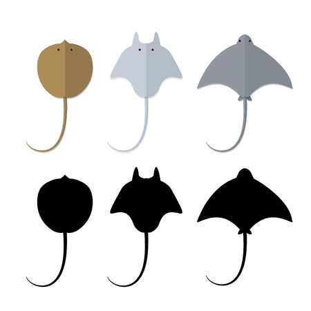 Top view, Stingray in flat and silhouette style