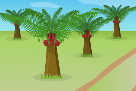 African oil palm field, vector design