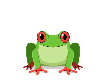 Red eye frog, Front view, vector design
