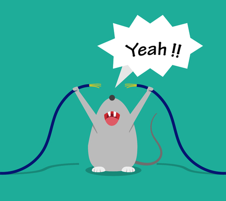 Bad rat happy after bite cable, vector cartoon design