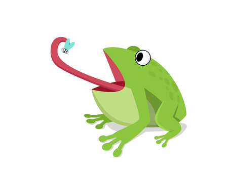 Green frog eat insect on white, cartoon vector design Ilustracja