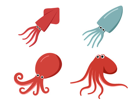 Squid, octopus and cuttlefish in flat, vector art