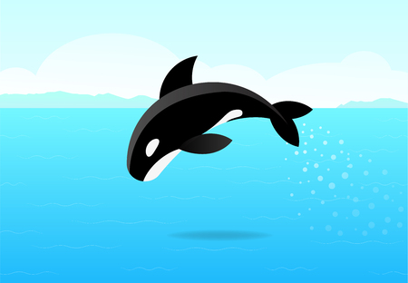 Killer whale jumping on sea, flat vector art design