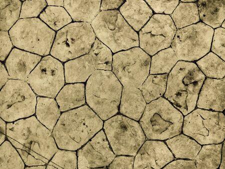 Cracked dry land as desert background