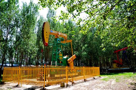 Oil derrick pumps in an area