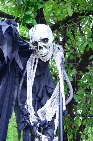 Halloween Skeleton hanging from a tree photo