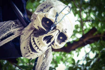 Halloween Skeleton hanging from a tree