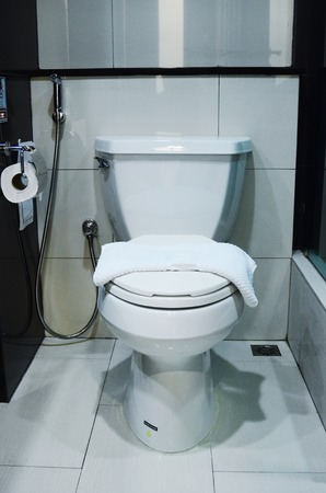 diarrhoea: Toilet bowl in a modern bathroom
