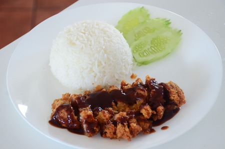 japanese cookery: rice and fried pork cutlet with japanese sweet sauce