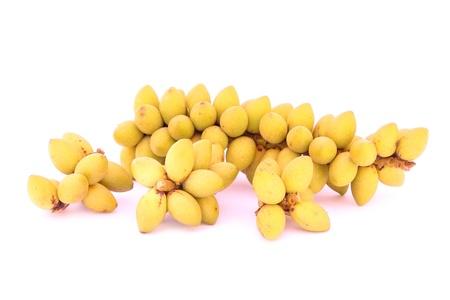 betel nuts Stock Photo - 17743860