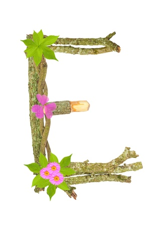 Photograph of Natural Twig and Stick Letter E Stock Photo