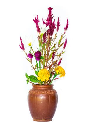 cockscomb: Cockscomb flowers Stock Photo
