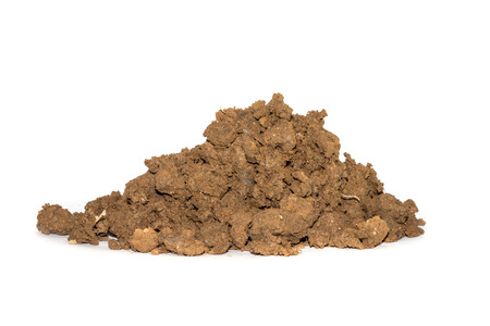 Soil on a white background