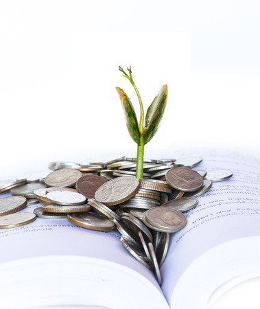 Plant growing on Baht coins Stock Photo