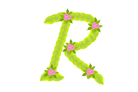 Photograph of Leaves Letter R photo