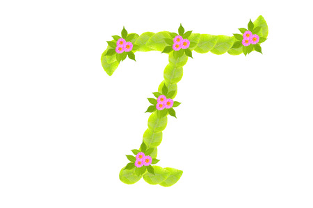 Photograph of Leaves Letter T photo