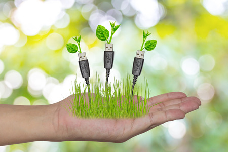 hand holding a usb cable with a small plant Foto de archivo