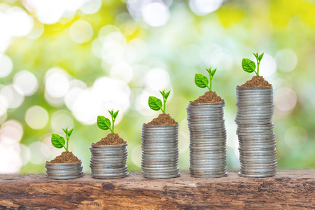 trees growing in a sequence of germination on piles of coins Stock Photo