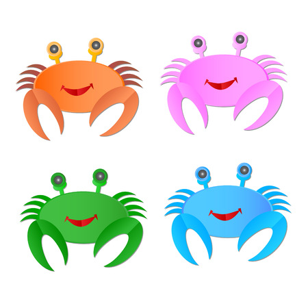 testa: Vector image of an crab on white background