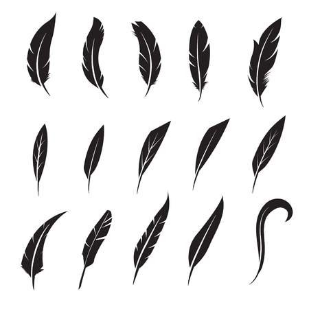 pen writing: Feather icon. Feather writing tool icon. Concept flat style design illustration icon