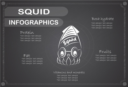cephalopod: Squid Infographics, Vector illustration.