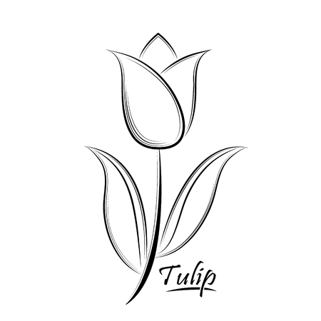 Vector zwarte contour van een tulp bloem geïsoleerd op een witte achtergrond