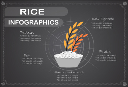 brown rice: Rice infographics, Vector illustration.