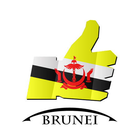 confirm: like icon made from the flag of brunei