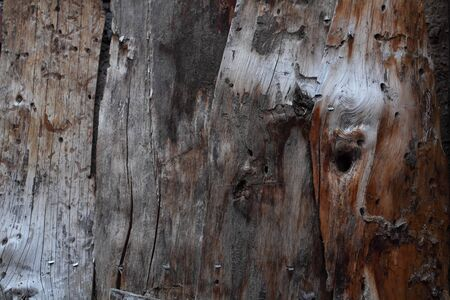 An old wooden door panel close up Stock Photo
