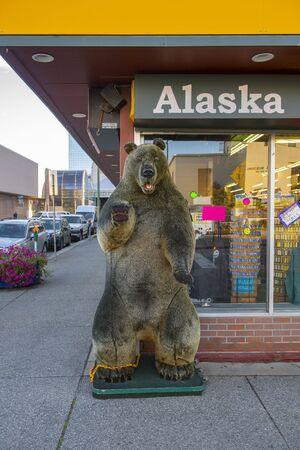 Grizzly bear specimen in downtown Anchorage, Alaska, AK, USA. Banque d'images