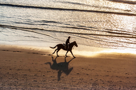 girl on horse: Horse riding on the beach at sunset