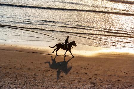 silueta ciclista: Paseos a caballo en la playa al atardecer Foto de archivo