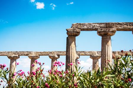 basilicata: Metaponto, Basilicata, Italy   Stock Photo