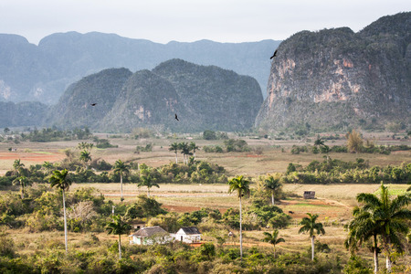 The valley of Vinales in Cuba   photo