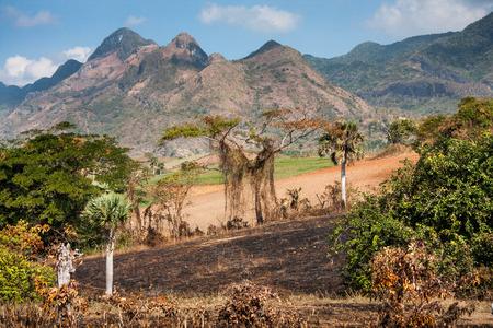 キューバの自然風景