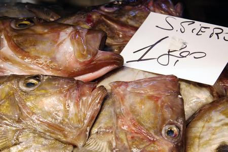 新鮮な魚やヴェネツィア、イタリア、ヨーロッパの他のシーフード マーケット