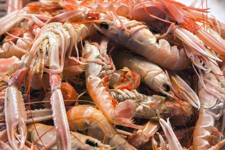新鮮な海老と魚の販売のためのエビ市場、ヴェネツィア、イタリア、ヨーロッパ 写真素材