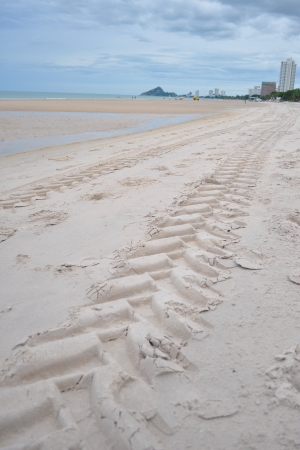 Tracks on the golden sand leading into the sea photo