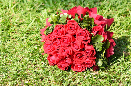 Bouquet of red roses on the grass Imagens - 26235811