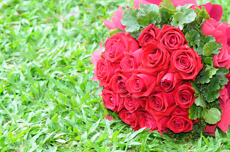 Bouquet of red roses on the grass Imagens - 26235845