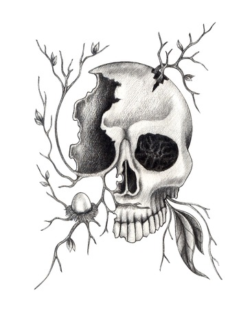 Art skull surreal. Hand drawing on paper. photo