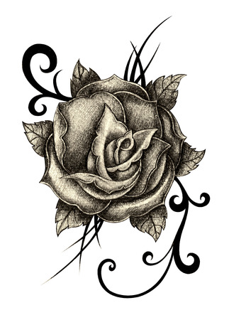 rose tattoo: Rose tattoo. Hand drawing on paper.