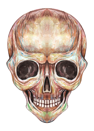 Arte Smiley Face Skull. Acuarela a mano sobre papel. Foto de archivo